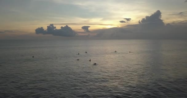Aerial view of surfers in ocean at sunset time
