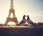 Valentýna Lovebird silueta na Eiffelovu věž