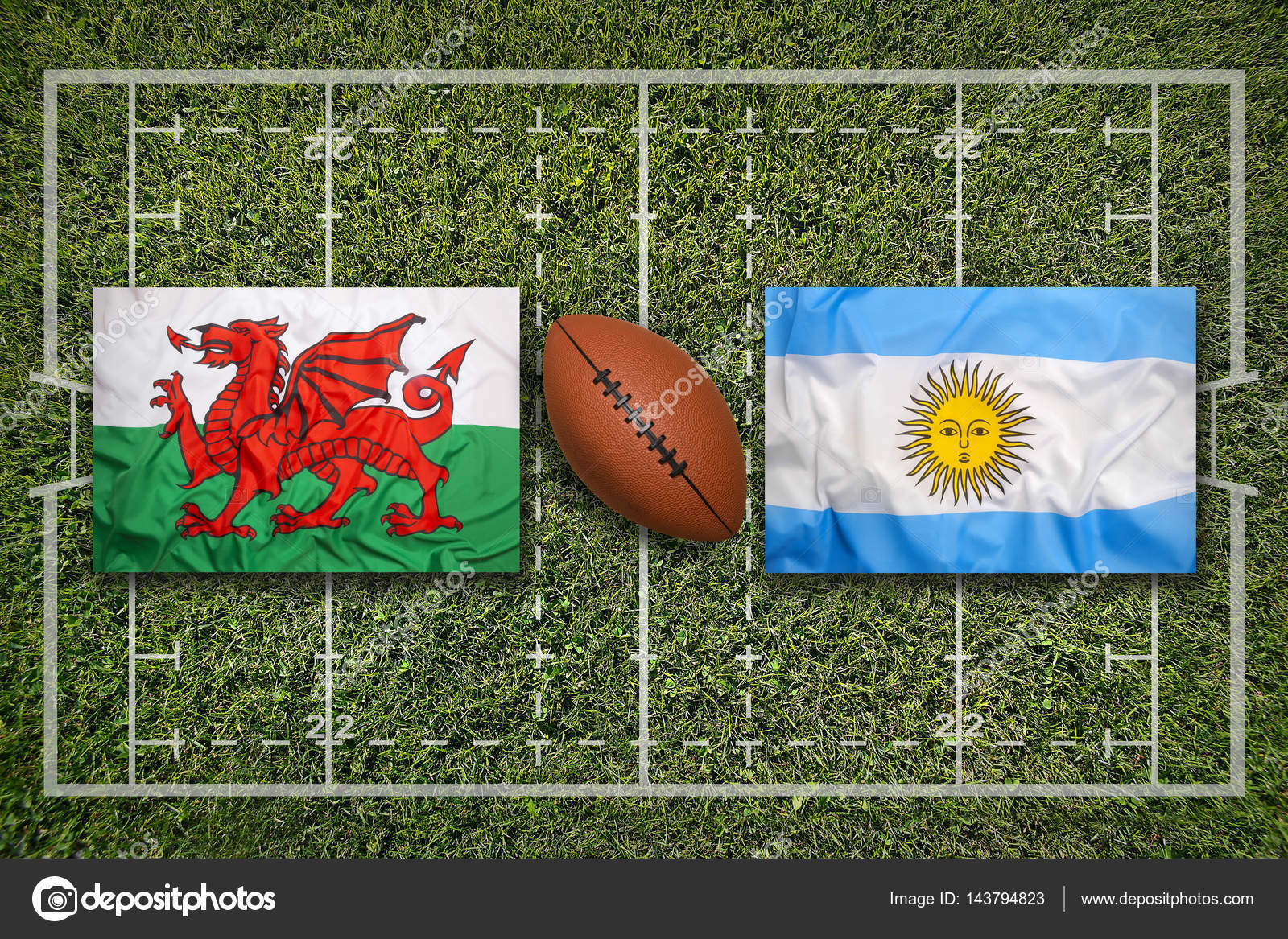 Image result for Argentina vs Wales