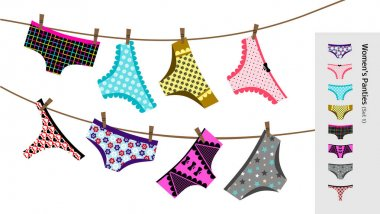 Set Of Different Types Women's Panties. Collection Of Vector Cotton And Lace Female Lingerie.
