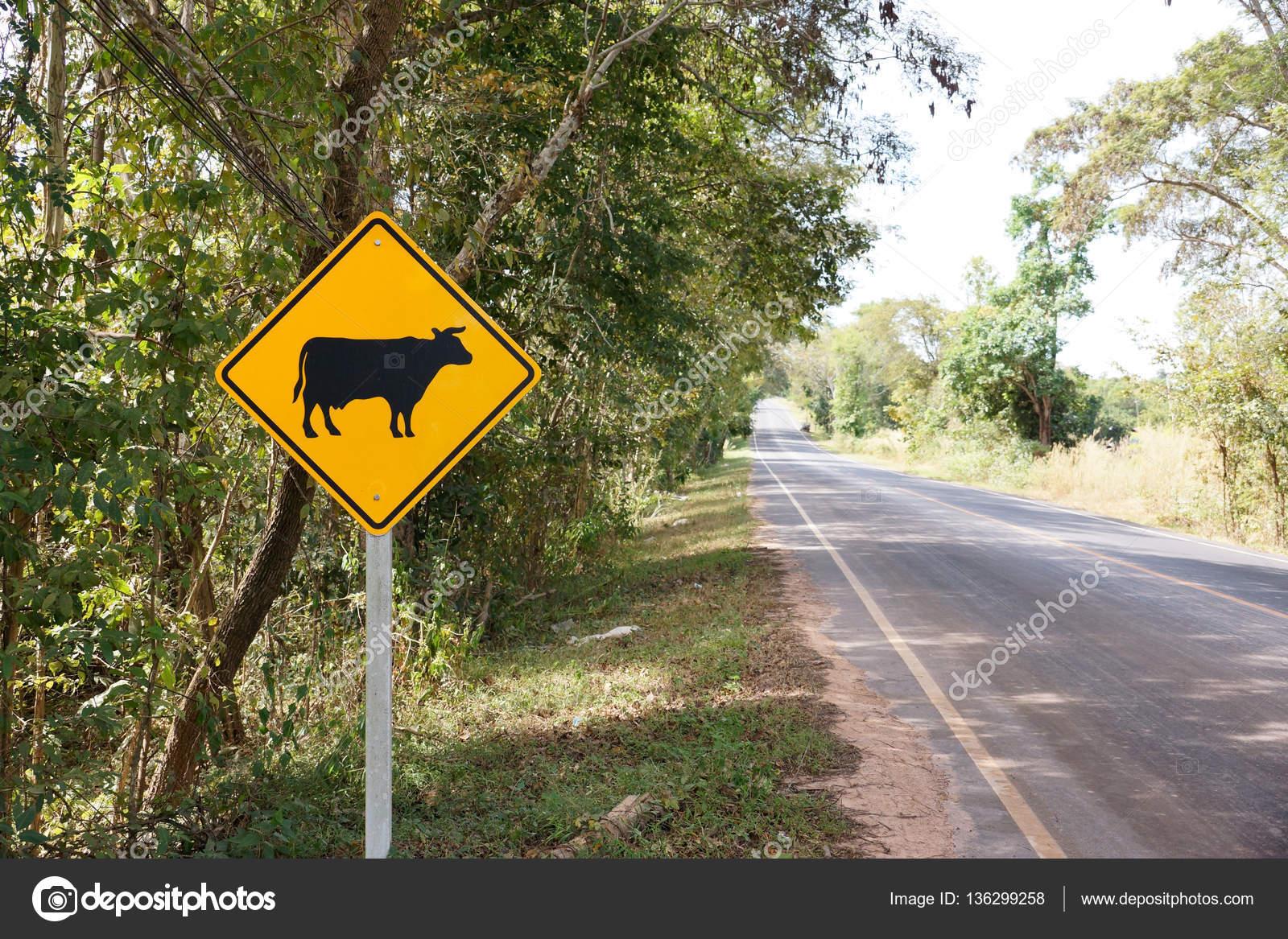 Top Panneau de signalisation attention vache de passage — Photo #119555674 BA76