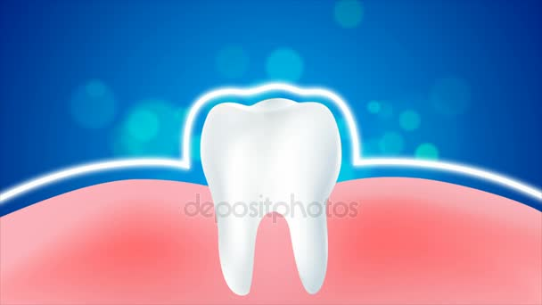 4K animation clean and dirty tooth and gum for Whitening and protection healthy oral concept