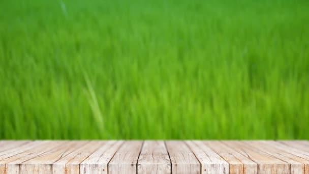 4 k dřevěné podlaze abstraktní pozadí přírody zelená pole