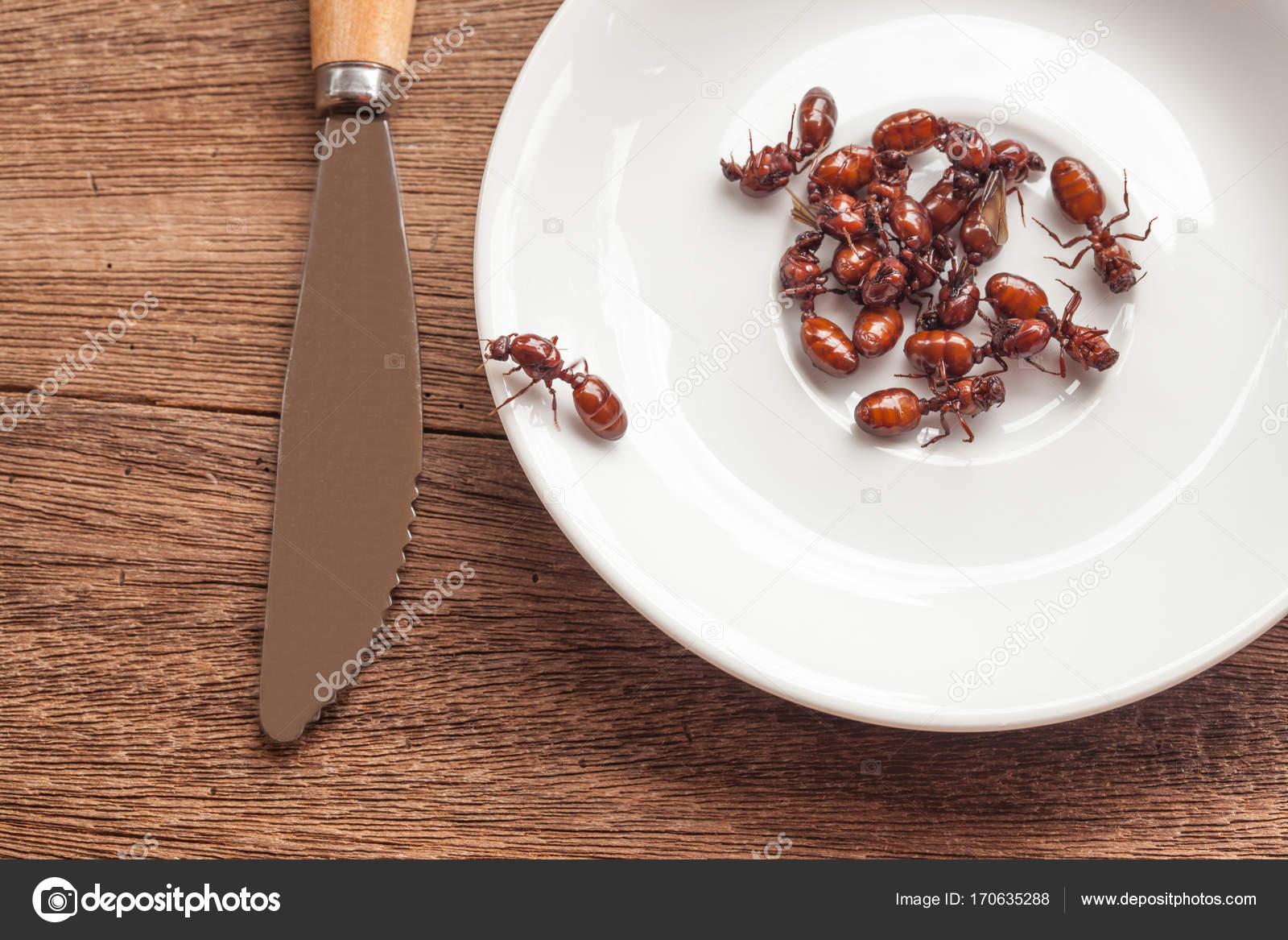 unterirdische Ameisen Braten ist saubere Lebensmittel in der lokalen ...