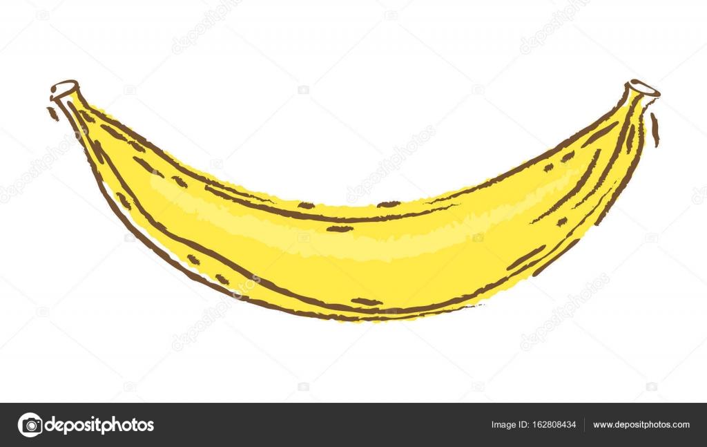 Imágenes Guineo Para Pintar Plátano Vector Ilustración