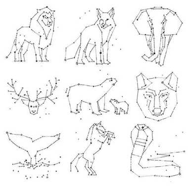 Collection of hand draw animals constellation on dark sky. Sketched wild animals with line and stars, horoscope style. Doodle constellation animals for cards, elephant, owl, wolf and other wild
