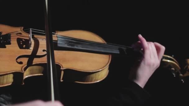Hegedűs hegedül a színpadon a sötétben. Előadó zenész. Hangszer. Tehetség.