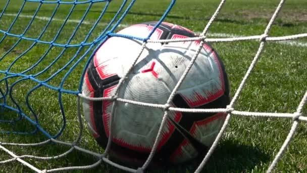 fotbalový míč v brance čisté