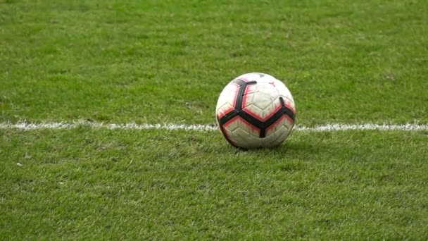 Goal kick in slow motion, Soccer game