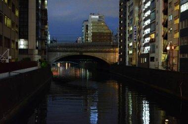 A bridge over a river in a city