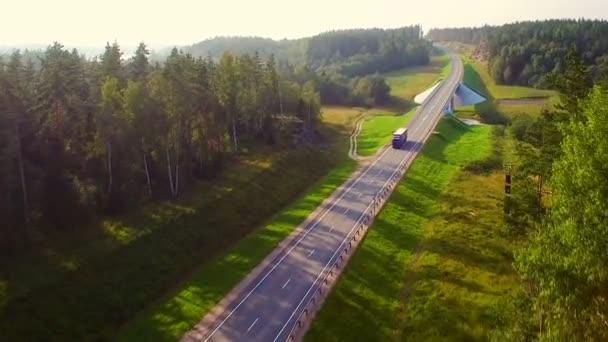 Krásný letecký pohled na vůz, který jezdí na silnici v lese