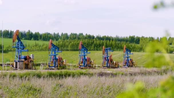 Pompe olio lavorando la terra tra i campi verdi