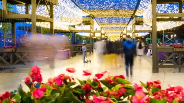 Strada pedonale decorato con aiuole fiorite e bella illuminazione