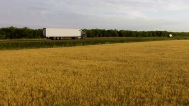 Krásný pohled dálnici jezdit nákladní a osobní automobily na venkově