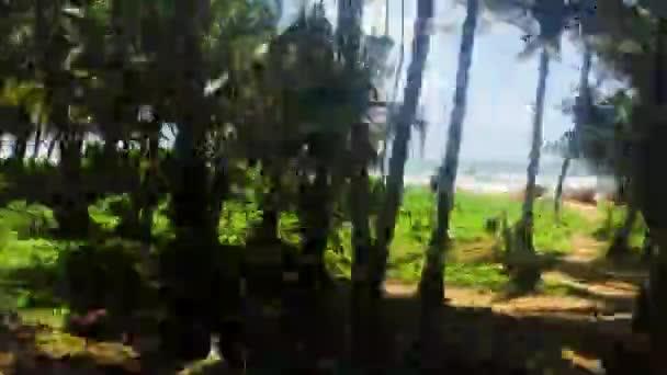 tropické pláže s palmovými stromy a keře. Pohled z projíždějícího vlaku. Srí Lanka