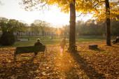 gyönyörű őszi park Giardini di Palazzo Te Olaszország