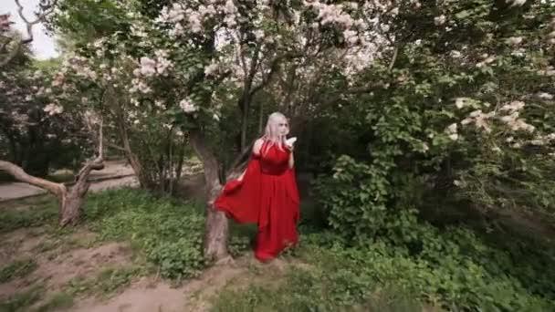 Elfí víla žena v lese, na její červené šaty.