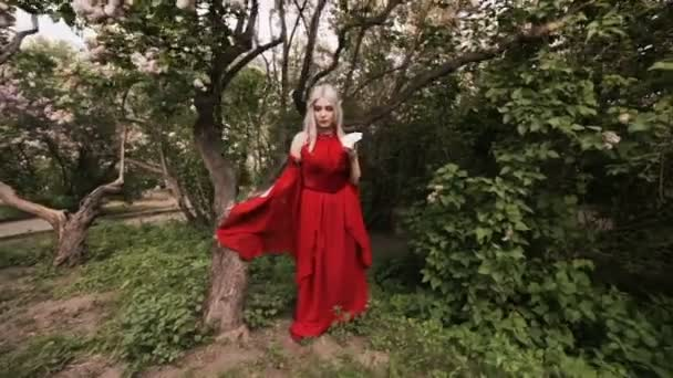 Fairy woman elf in a red dress, she is in the woods.