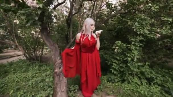 Gyönyörű és tündér nő az erdő elf, ő mágikus