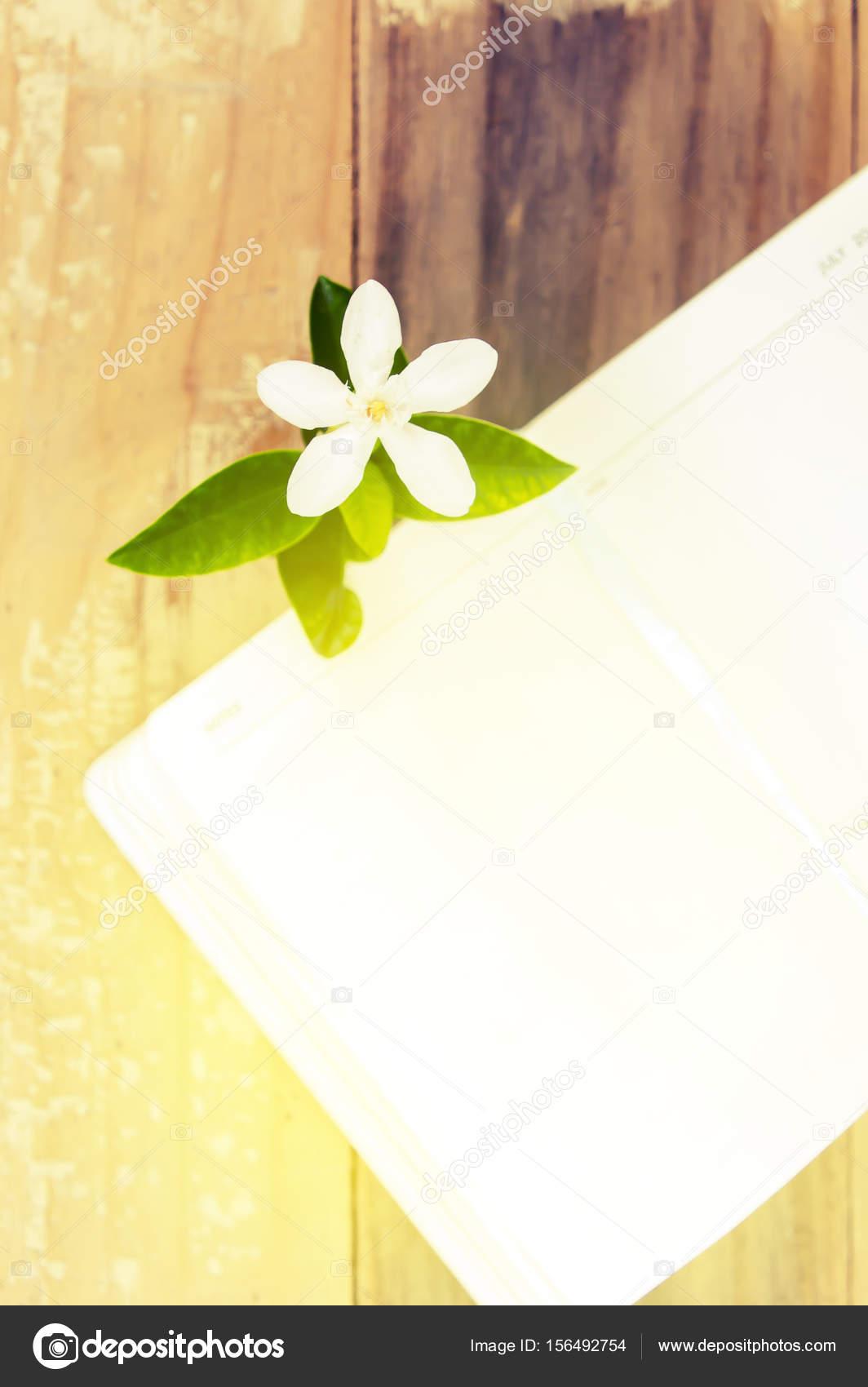 Fleur de livre ouvert sur le fond du jardin, ton Vintage ...