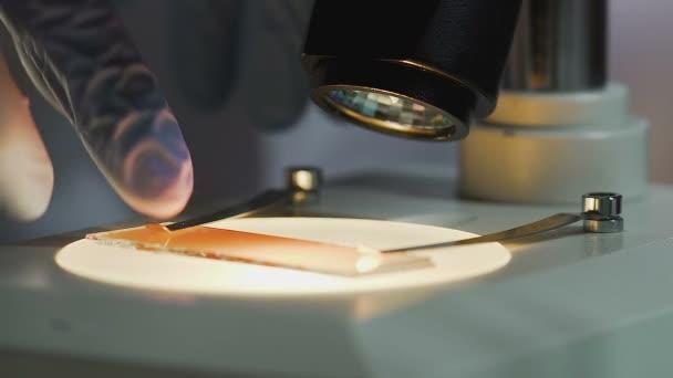 Wissenschaftler nimmt gebrauchte blutprobe von mikroskop medizin