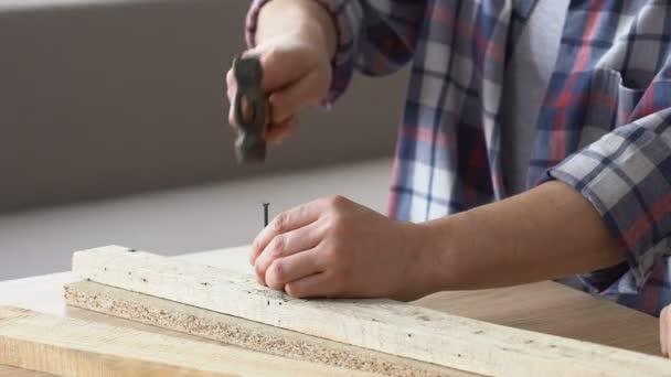 Man Hammering Nail, DIY Repairing Furniture, Guy Hobby, Leisure Time, Close  Up