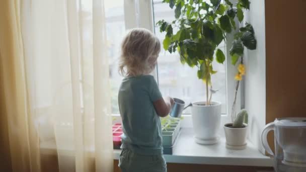 Roztomilé malé dítě, blond kudrnaté batole dívka, je zalévání květiny na okně doma