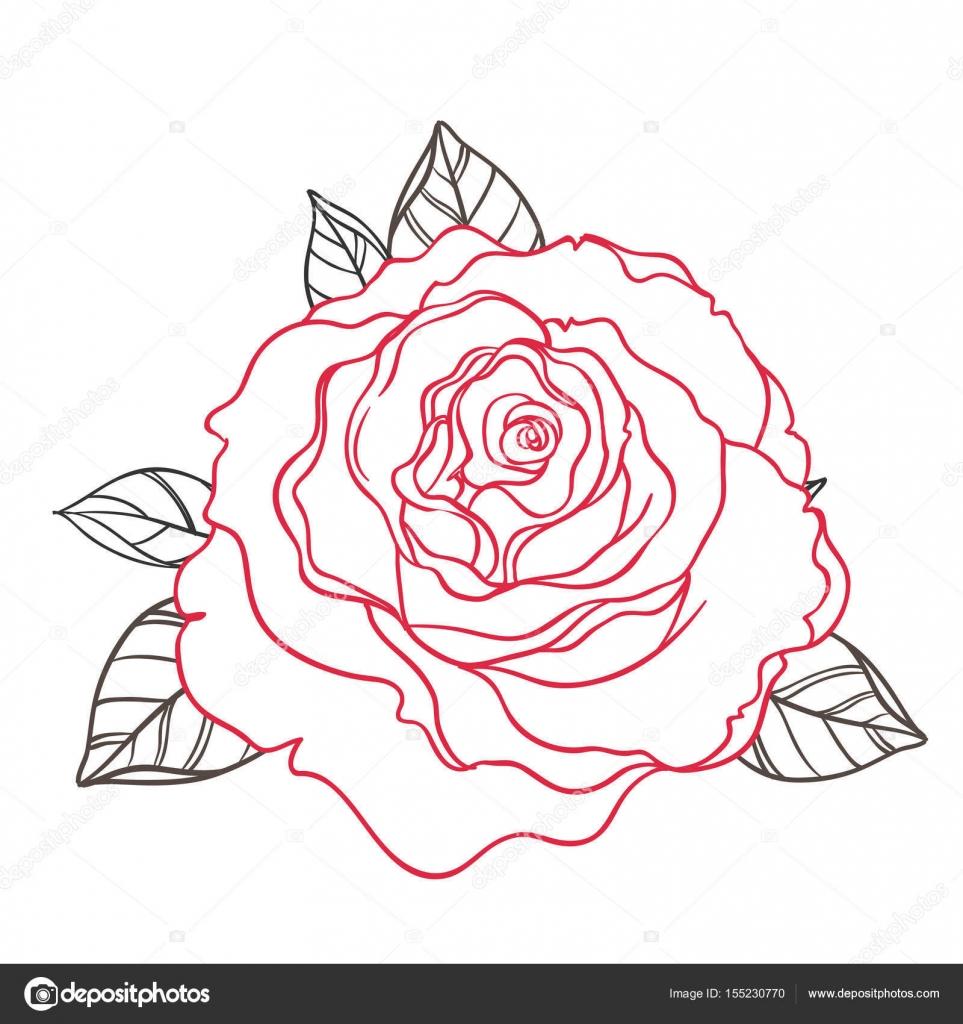 Rosas de estilo blanco y negro del tatuaje con hojas aisladas en ...