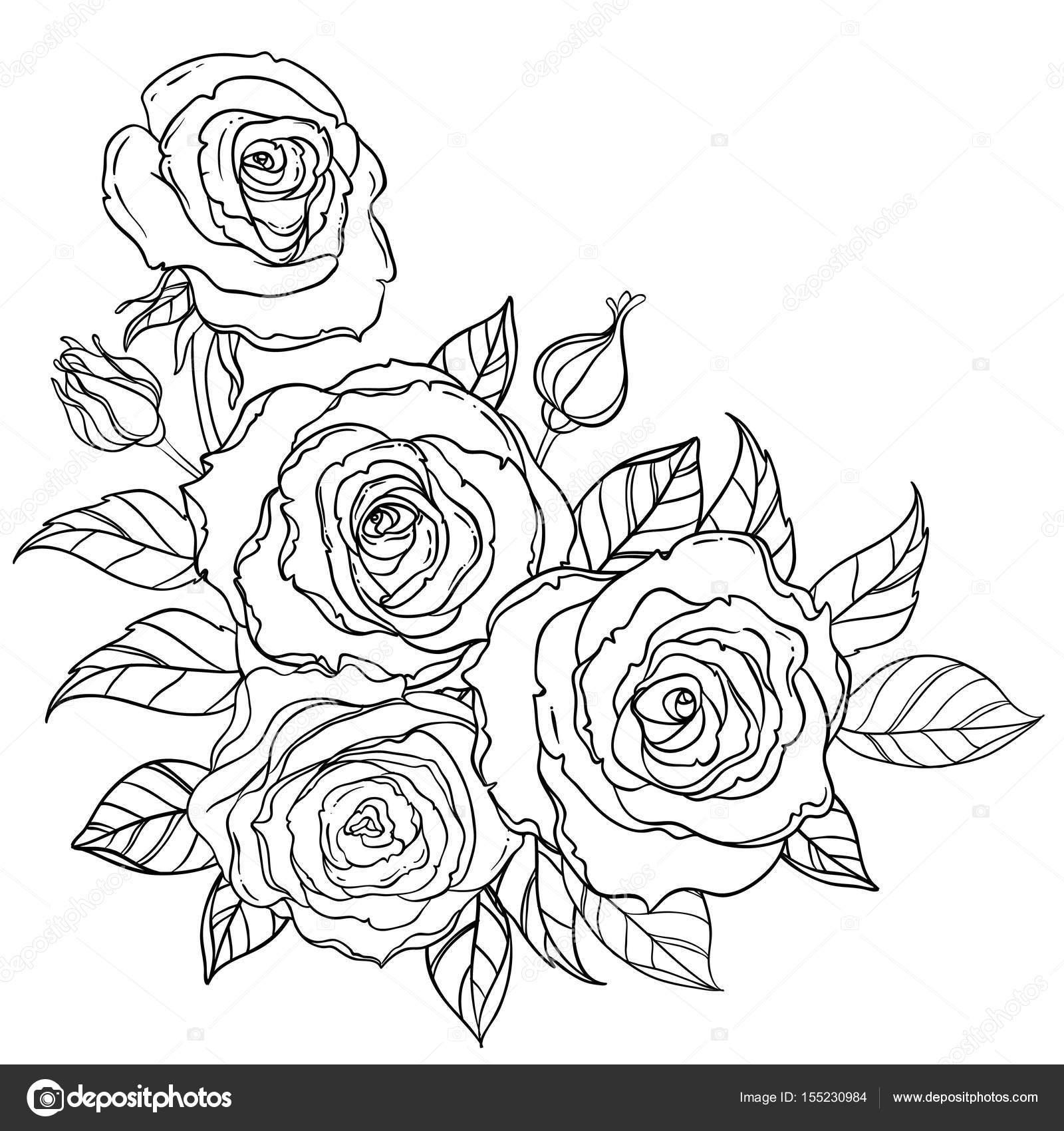 Imágenes Rosas Blanco Y Negro Rosas De Estilo Blanco Y Negro Del