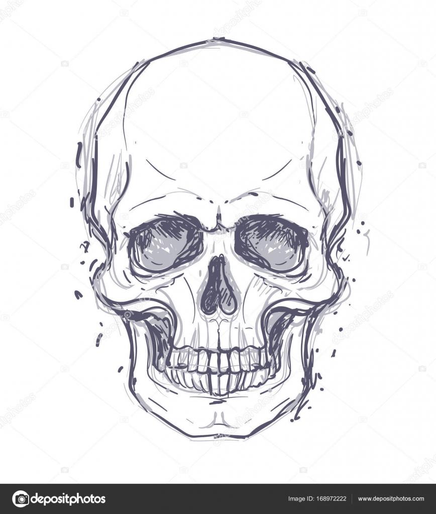 Zeichnung von menschlichen Schädeln — Stockvektor © vgorbash #168972222