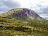 Schottland Natur im Sommer