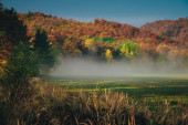 Fotografie Peaceful autumn morning scenery by Carpathian forest