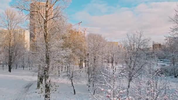 Letecký let přes zimní les a předměstí 13