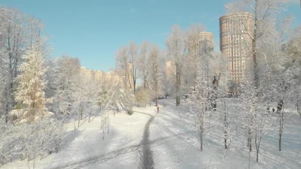 Letecký let přes zimní les a předměstí 10