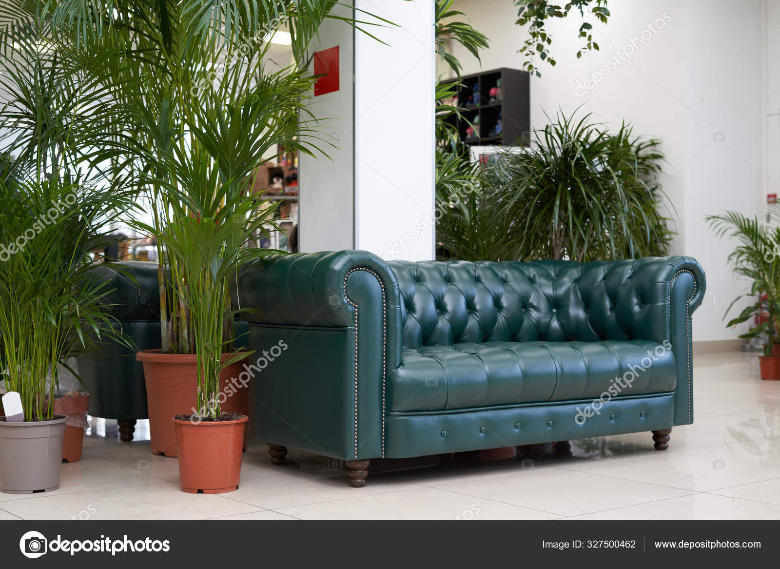 Place Relax Waiting Area Chester Leather Green Sofa Large Indoor Stock Photo C Iceberg Dp 327500462