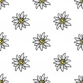 Edelweiss flower seamless pattern background texture