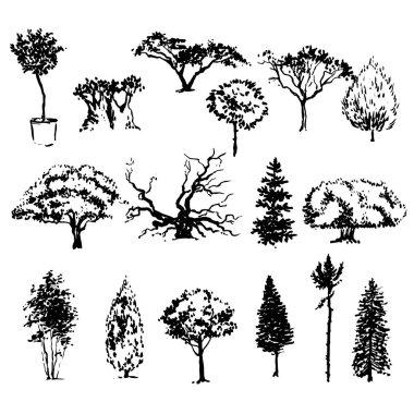 Hand drawn trees sketch set
