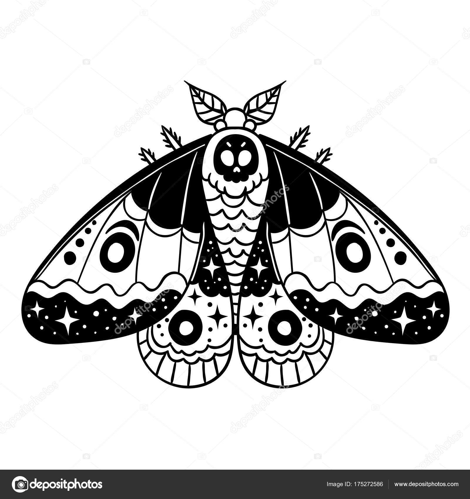 Vector Illustration Dessin Papillon Nuit Noir Blanc Dessin Anime