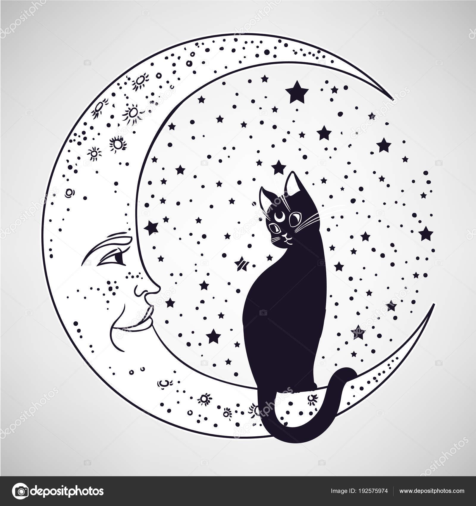 Kot Księżycu Ilustracja Wektorowa Białym Tle Idealne Podłoże