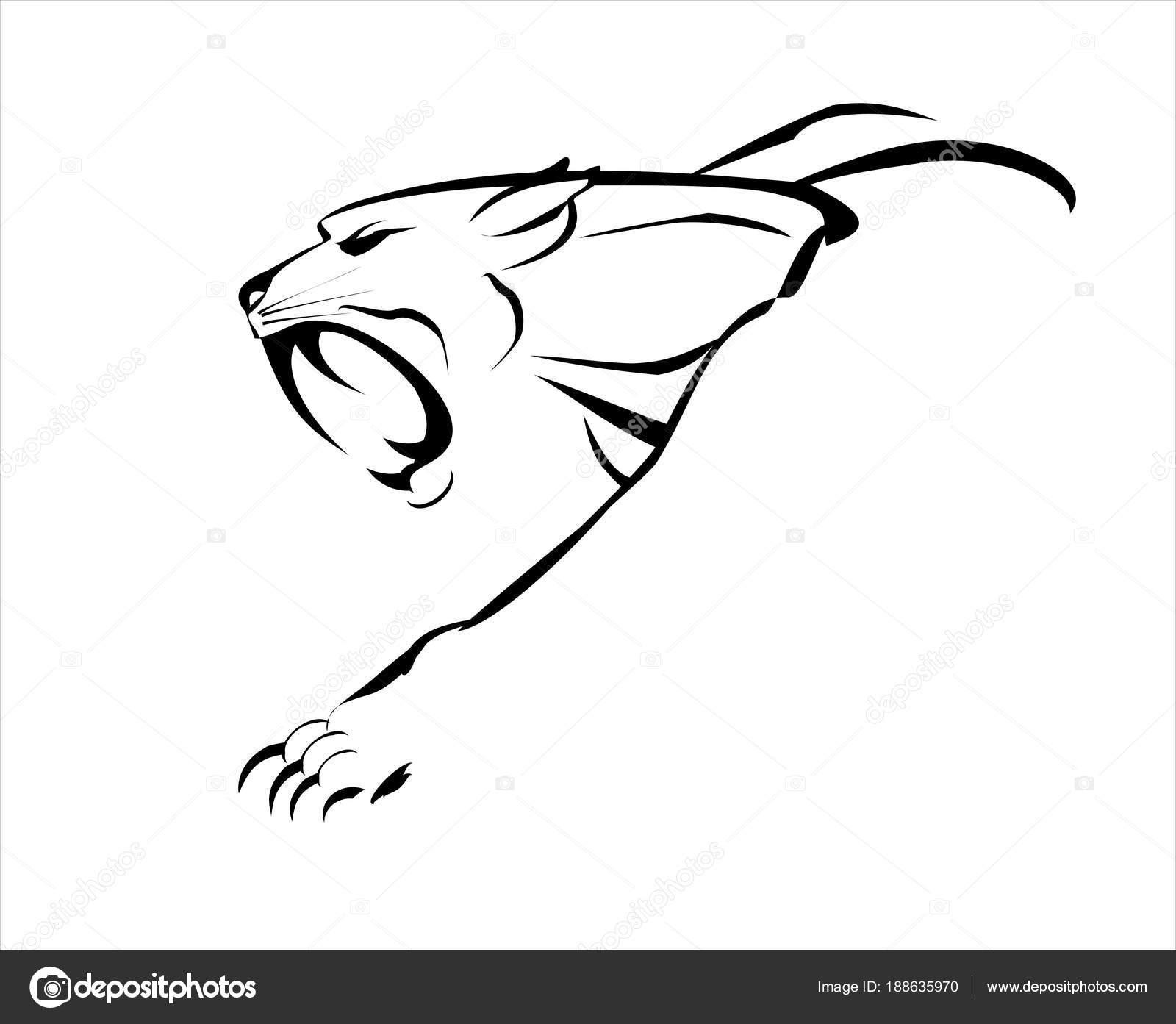 cougar  puma  tiger  fang face big cat  roaring and