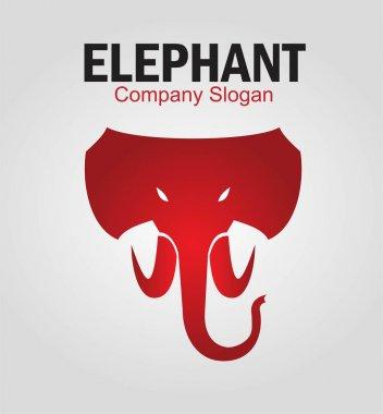 Elephant. Elephant elegant head