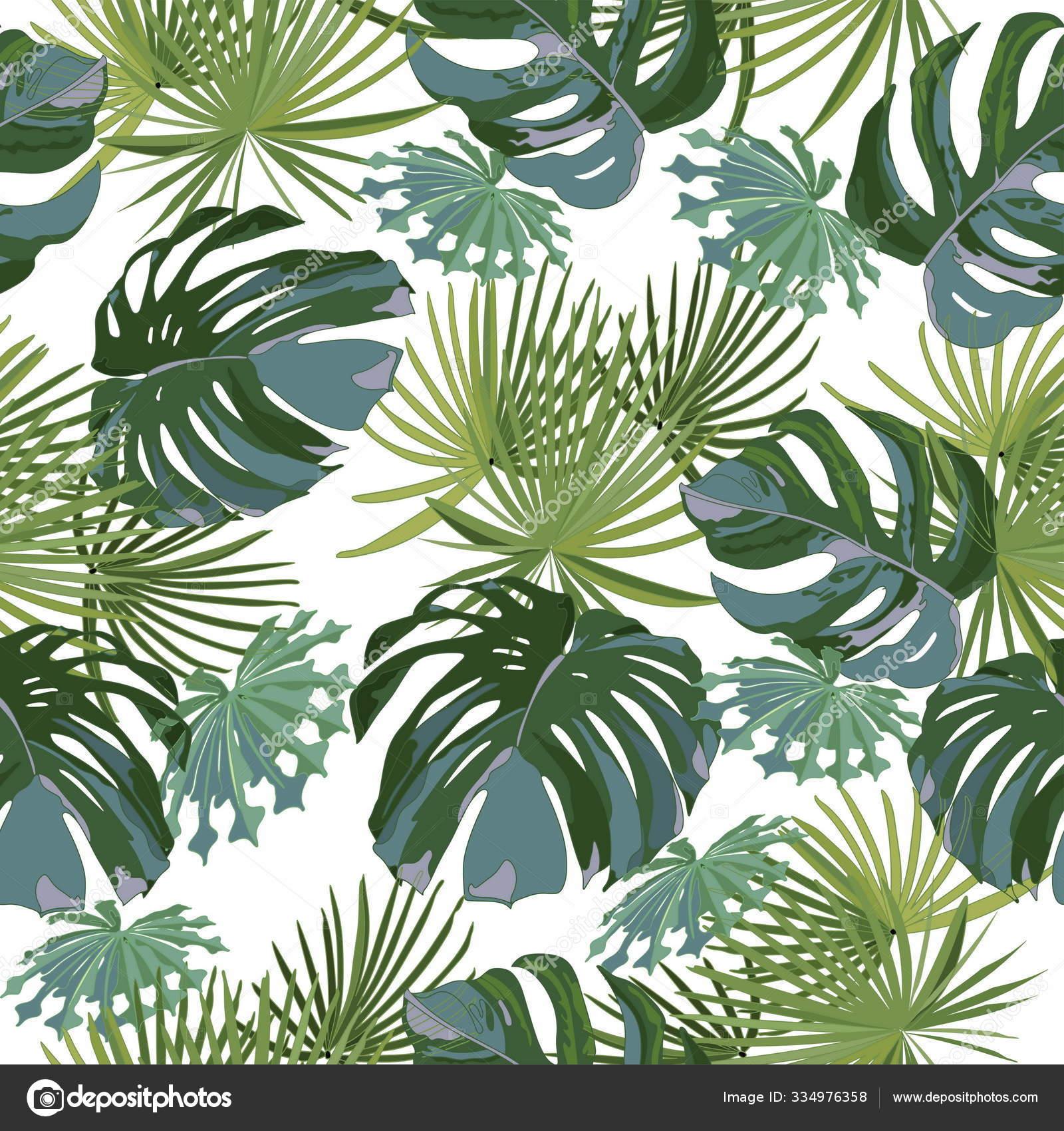 depositphotos 334976358 stock illustration exotic tropical palm leaves monstera