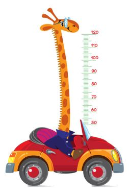 Cheerful funny giraffe on car. Height chart or meter wall or wall sticker. Childrens vector illustration with scale from 50 to 120 centimeter to measure growth. Growing chart clip art vector