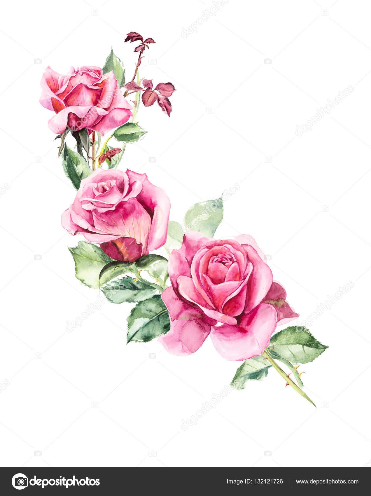 Цветы рисунок роза 6