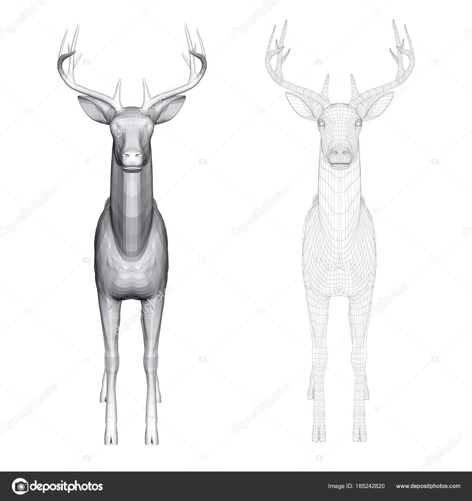 ciervo — Archivo Imágenes Vectoriales © Slim3D1 #185242820