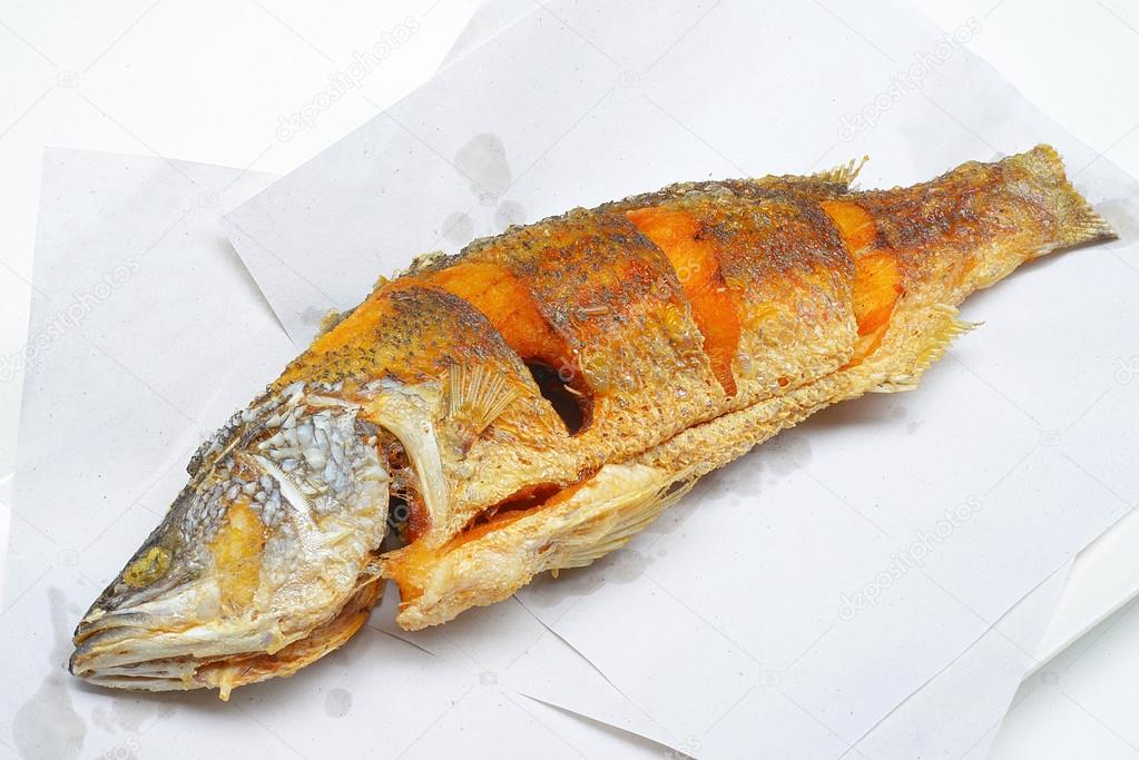 Asian sea bass lates calcarifer