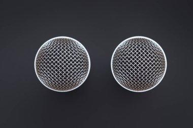 Two karaoke microphone