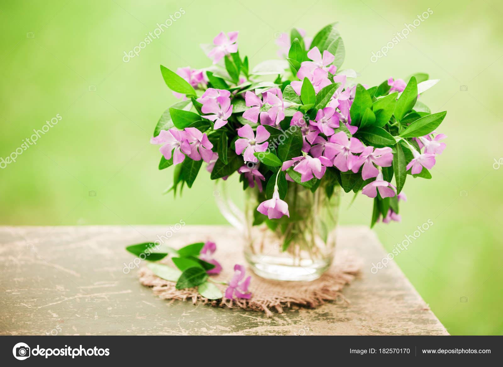 Vintage bouquet periwinkle flowers outdoor grunge wooden table green vintage bouquet periwinkle flowers outdoor grunge wooden table green blurred stock photo izmirmasajfo