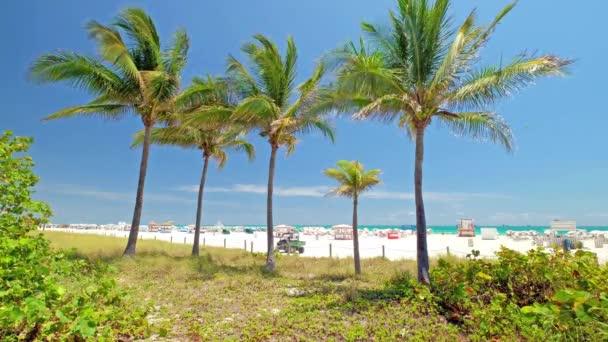 Malebné Miami Beach