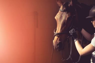 Woman fixing horse bridle